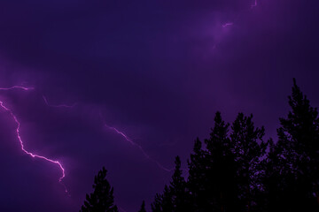 Thunder and lightning in the purple sky against the silhouettes of trees.