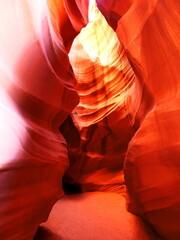 Photo sur Plexiglas Rouge mauve OLYMPUS DIGITAL CAMERA