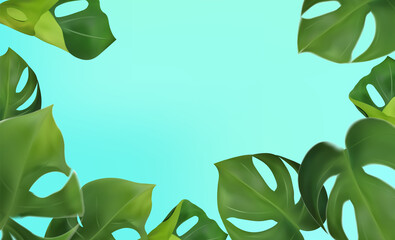 Green leaves monstera on a blue background. Banner for perfumes, cosmetic products, essential oil. Tropical leaf background and copy space for your text. Vector illustration. Papier Peint