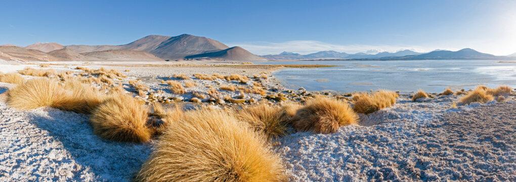 South America, Chile, Norte Grande, Antofagasta Region, Atacama desert, Los Flamencos National Reserve, the altiplano at an altitude of over 4000m looking over the salt lake Laguna de Tuyajto