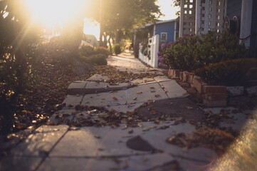 A cracked sidewalk leading into the sun in a neighborhood