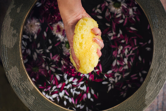 Hand of Woman Preparing a Relaxing Flower Bath