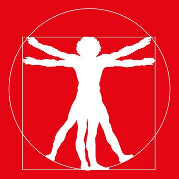 avocado, vectorStylized silhouette  of the Vitruvian man or Leonardo's man. Homo vitruviano. illustration