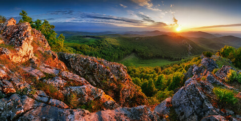 Forest and mountain at sunset - landscape panorama
