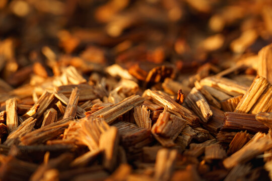 Close up on wood chips at sunset with autumn colors