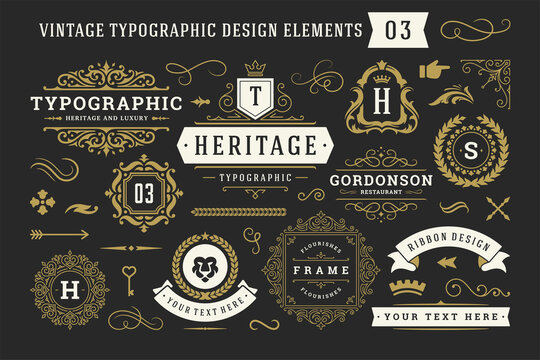 Vintage typographic decorative ornament design elements set vector illustration
