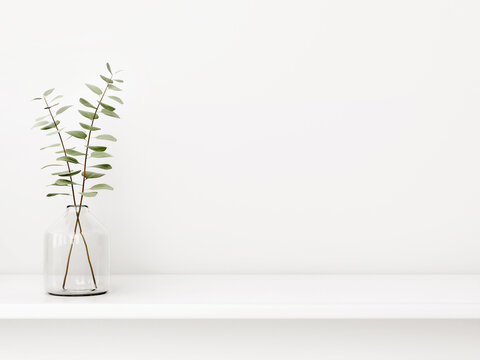 Interior wall mockup with green eucalyptus branch in bottle standing on the shelf on empty white background with free space. 3D rendering, illustration.