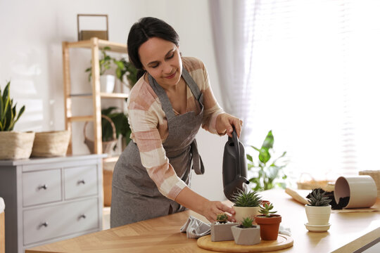 Mature woman watering houseplants at home. Engaging hobby
