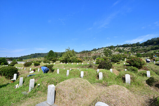 Chuseok, Korean Thanksgiving Day Landscape, at the Hyoja Cemetery Park in Jeonju, South Korea