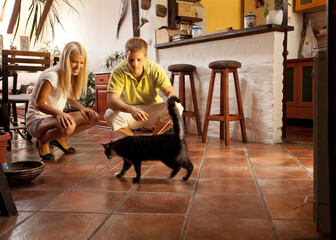 Young couple playing with their cat at home.