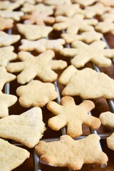 Christmas cookies on a rack