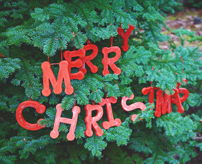 Wood letters spelling Merry Christmas hang in a fir tree