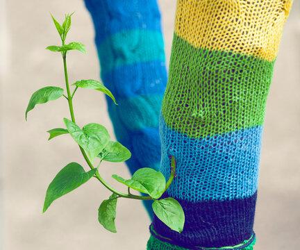 Yarn bombing - Tree