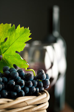 Freshly picked grapes with red wine glasses and bottle