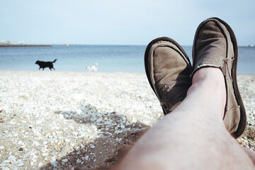 Man's legs on a beach with dogs in background.