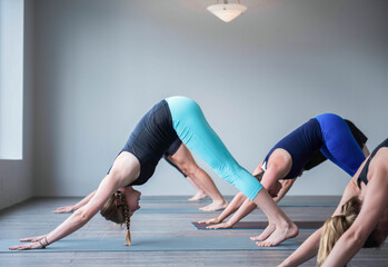 Students in a yoga class are in downward-facing dog position