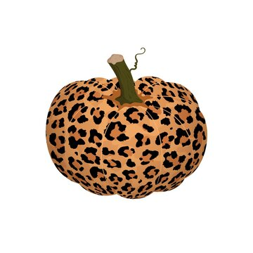 Vector illustration of pumpkin with leopard print isolated on white background. Cartoon flat abstract pumpkin. Autumn vegetable clip art for print, banners, thanksgiving day, halloween background.