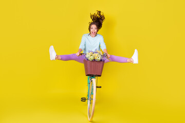 Foto auf Leinwand Vogel auf Asten Full body size photo of insane young girl riding vintage unusual bike flying from hill carry flowers wind blow hair wear blue pullover violet pants isolated vibrant yellow color background