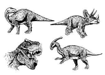Vector set of dinosaurs isolated on white , elements for printing,graphical illustration