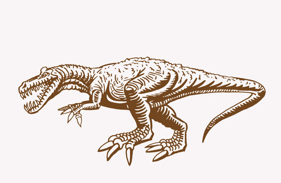 Graphical vintage illustration of tyrannosaurus for printing and design.Vector dinosaur