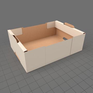 Retail cardboard tray box 2
