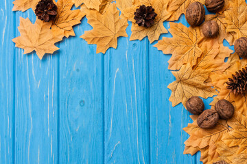top view of autumnal foliage with nuts and cones on blue wooden background