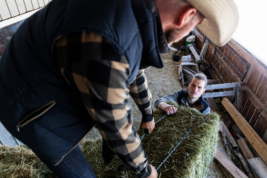 Male ranchers lifting hay bale in barn