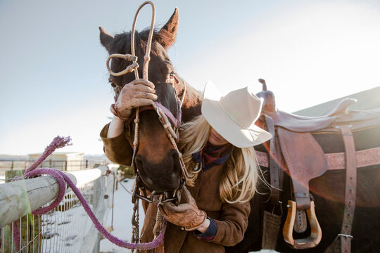Female rancher putting bridle on horse at sunny winter fence