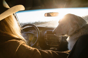 Female rancher with dog driving truck