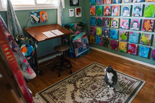 Art studio with cat on rug