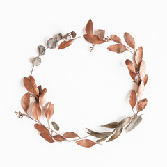 Autumn composition. Wreath made of eucalyptus leaves on white background. Autumn, fall concept. Flat lay, top view