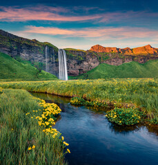 Exciting sunset on popular tourist destination - Seljalandsfoss waterfall, where tourists can walk behind the falling waters. Pictuewsque summer scene of Iceland. Beauty of nature concept background.