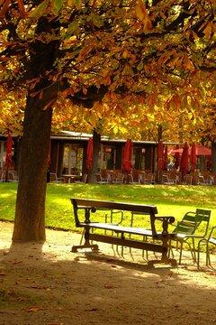 l'air d'automne, Paris, France