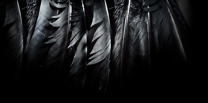 Halloween background with black raven feathers on dark grunge backdrop. Horror gothic abstract design with copyspace.