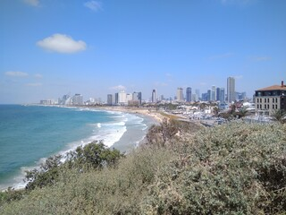 Nice view of the Mediterranean Sea and Tel Aviv in summer in Israel. Scenic views of the beaches and modern architecture of Tel Aviv. The photo can be used as a banner for advertising. Wall mural