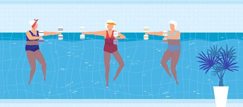 Sport swim activity in pool vector illustration. Cartoon flat elderly woman swimmer character group doing exercise with dumbbells, active old people swimming in blue pool water of aqua park background