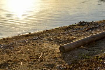 Fototapeta Gruba, drewniana belka na plaży nad jeziorem. obraz