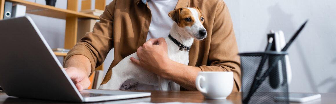 cropped view of businessman with jack russell terrier dog working at laptop near coffee cup, panoramic concept