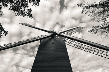 Printed roller blinds Parrot Black and white low-angle shot of the Neuwe Papegaai windmill surrounded by tree tops against a cloudy sky.