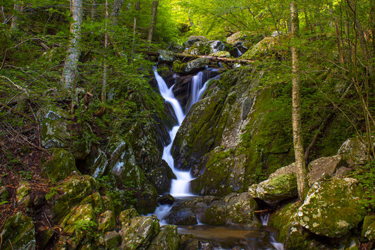 Milky waterfall scenery in the mountain forest of Shenandoah National Park, Luray, Virginia.