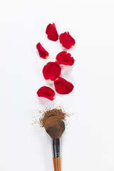 Rose petals and brush lying under on white background