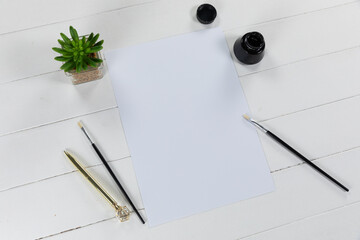 View of a white sheet of paper, a bottle of black ink and brushes with a green plant on plain white