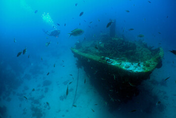 Acrylic Prints Shipwreck underwater ship wreck scuba diver caribbean sea