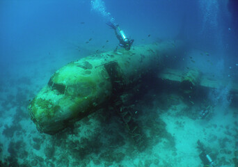 Garden Poster Shipwreck underwater ship wreck scuba diver caribbean sea