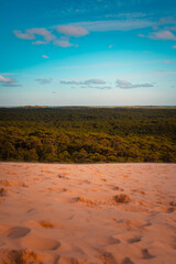 Les Landes forest seen from the Dune of Pilat, at Arcachon, Aquitaine, France.