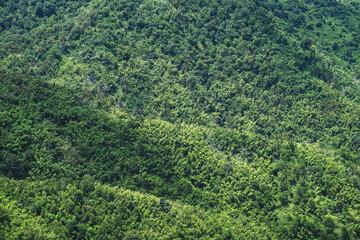 Foto auf Leinwand Olivgrun Landscape image of a beautiful mountains ranges view