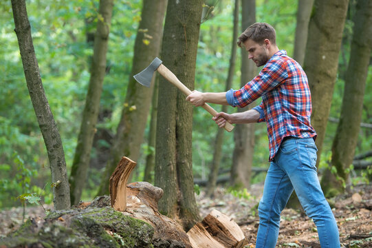 Man is chopping wood with vintage axe, picnic