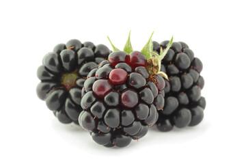 Blackberry fruit closeup