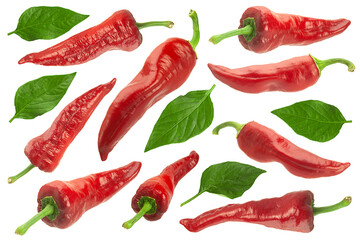 Sweet red pepper with leaf collection