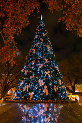 Christmas tree in Vienna, Austria